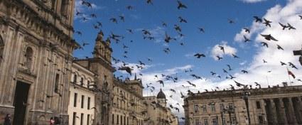 Bogotá to Santander Culture & Nature Journey