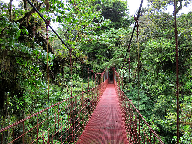 """Monteverde puente"" by Haakon S. Krohn - Own work. Licensed under CC BY-SA 3.0 via Wikimedia Commons."