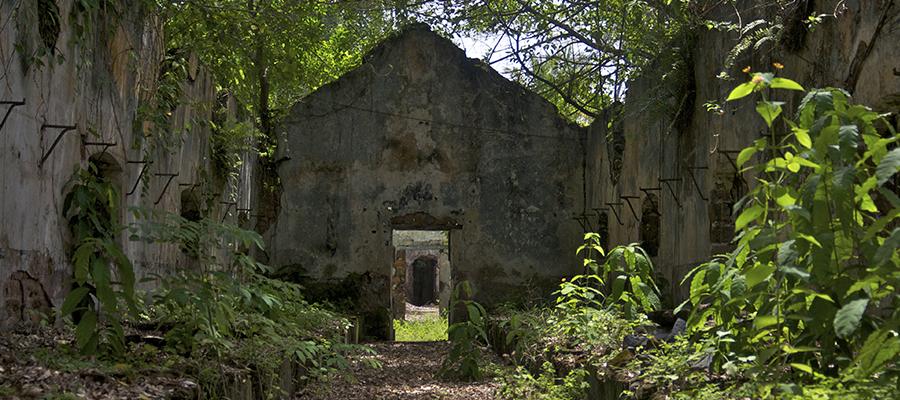 French Guiana Slide 2