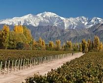 Mendoza Tourism