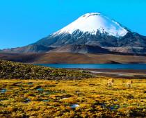 Volcano Atacama