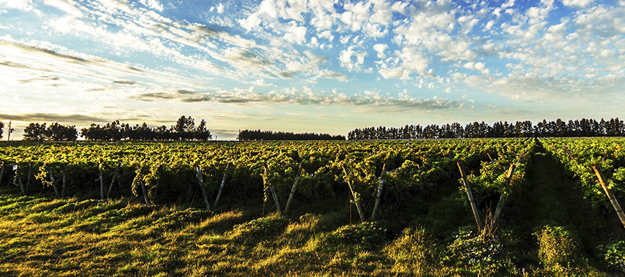 Uruguay slide2