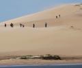 A Remote Beach Town in Uruguay: Cabo Polonio